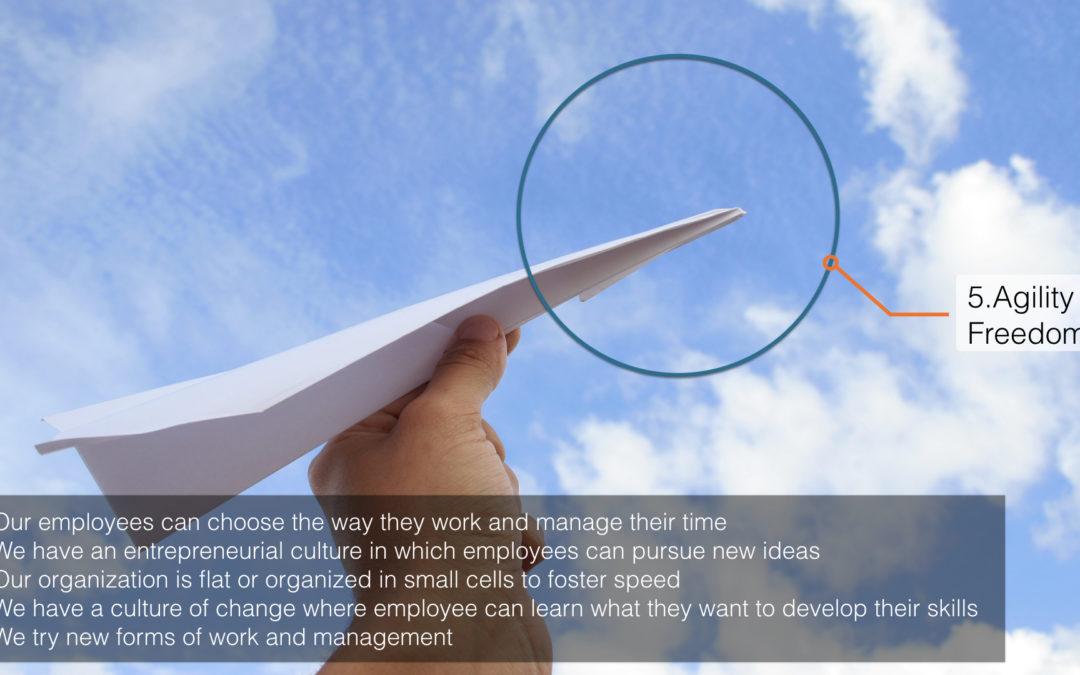 Management innovation practices – A world tour – Part 5/6: Agility